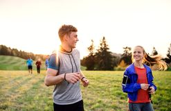 Large group of people cross country running in nature. A large group of people cross country running in nature at sunset stock image