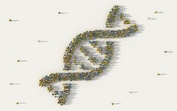 Large group of people forming DNA, helix model medicine symbol in social media and community concept on white background. 3d sign royalty free illustration