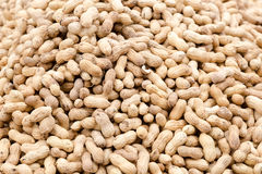 Large group pf peanuts on market for sale Stock Photography