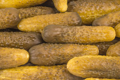 The large group of pickled cucumbers Royalty Free Stock Photography