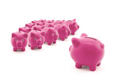 Large group of piggy banks Stock Photos