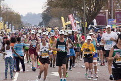 Large Group of Runners at Comrades Ultra Marathon Stock Photo