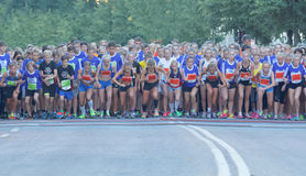 Large group of running girls and boys on the start line Royalty Free Stock Image