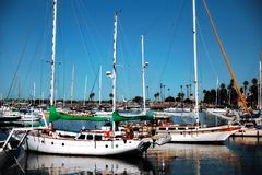 Sailboats in a harbor in San Diego royalty free stock photo