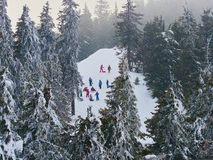Large group of skiers on ski slopes in a mountain resort in winter. In Madaras, Harghita, Romania Royalty Free Stock Photography