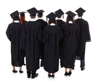 Large group of students graduating. Standing in the gowns and mortarboard hats viewed from behind isolated on white Stock Photos