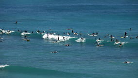 Large group of surfers riding waves. A crowd of surfers eagerly await for the right wave stock video footage