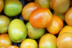 Large group of tomatoes. At selling vendor in supermarket Stock Image