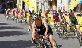 Large group of triathletes cycling Royalty Free Stock Photo