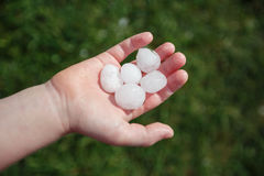 Large hail on the child`s palm. Royalty Free Stock Photos