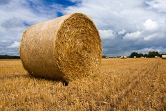 A large hay bale after the harvest. The large hay bale stands on the ground after the harvest is done Stock Photo