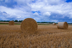 A large hay bale after the harvest. The large hay bale stands on the ground after the harvest is done Royalty Free Stock Photos