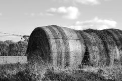 Large hay bales in countryside Royalty Free Stock Photography