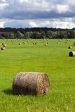 Large haymow on the field Stock Images