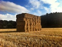 Large Haystack in Somerset Royalty Free Stock Photo