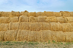 Large haystacks Royalty Free Stock Images