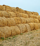 Large haystacks Royalty Free Stock Photos