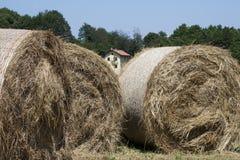 Large haystacks round Stock Photos