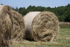 Large haystacks round Stock Photo