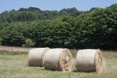Large haystacks round Royalty Free Stock Images