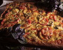 Large homemade rectangular pizza on the dark plate with olives and parmesan cheese with herbs. Stock Photos