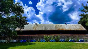 A large horse barn with dog kennels outside that is used for hunting Royalty Free Stock Photography