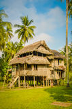 Large house in Avatip. Large simple house made of wood and straw surrounded by greenery in Avatip, Sepik river in Papua New Guinea Royalty Free Stock Photos