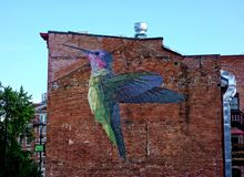 Large Hummingbird Mural Royalty Free Stock Photography