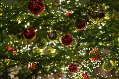 Large Illuminated Christmas Tree Background Stock Image