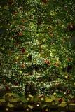 Large Illuminated Christmas Tree Decoration Stock Images