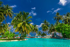 Large infinity swimming pool on the beach with palm trees and um Royalty Free Stock Photography
