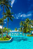 Large infinity swimming pool on the beach with palm trees and. Umbrellas Stock Images
