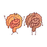 Large Intestine Human Internal Organ Healthy Vs Unhealthy, Medical Anatomic Funny Cartoon Character Pair In Comparison. Happy Against Sick And Damaged. Vector Stock Photos