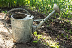 Large iron watering can, watering plants Stock Photo
