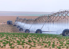 Large irrigation systems arable crops Stock Photography
