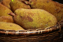 Large jack fruit with large spikes at market in India Stock Image