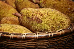 Large jack fruit with large spikes at market in India Royalty Free Stock Photos