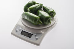 Large Jalapeños on a white scale. Stock Photography