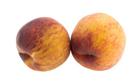 Large juicy peaches. Stock Photography