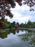Large lake in a garden with trees. Tree leaves round a landscaped lake Stock Images