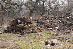 Large landfill among trees. Stock Photography