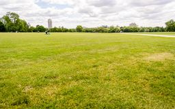 Hyde Park, London, UK. Large lawn in Hyde Park, London, UK Royalty Free Stock Image
