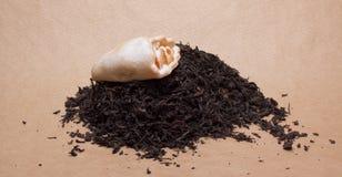 Large leaf tea Royalty Free Stock Photography