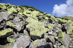 Large lichen covered stones in the mountains Stock Photography