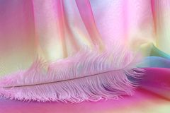 Beautiful delicate pink feather background. Large light pink ostrich feather laid across rainbow coloured chiffon material with copy space above Royalty Free Stock Photo