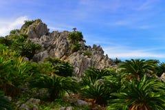 Large limestone rock formations in Daisekirinzan park in Okinawa Royalty Free Stock Photography