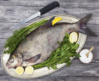 A large live bream river fish  fish lying on a on on an iron tray with a knife and slices of lemon and with salt dill Stock Photo