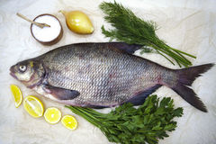 A large live bream river fish  fish lying on  a paper background  with  and slices of lemon and with salt dill Stock Photos