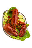 Large Lobster Royalty Free Stock Images