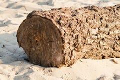 Large log lying on the sand Royalty Free Stock Photo